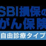SBI損保「がん保険自由診療タイプ」評判・デメリット!加入者のインタビュー
